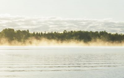Applications Being Accepted for Vacancy on Board of Directors – White Lake Resources Corp.